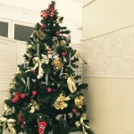 お店にクリスマスツリーが届きました★