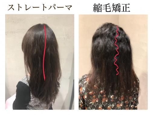 ストレート パーマ と 縮 毛 矯正 縮毛矯正とストレートパーマの違い ...